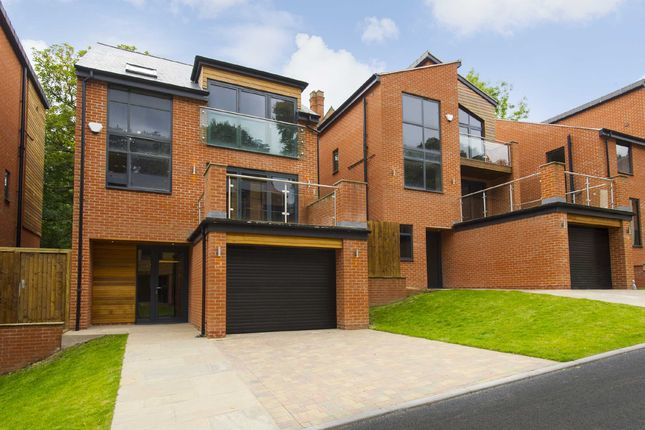 Thumbnail Detached house for sale in Springfield Pastures, Alexandra Park