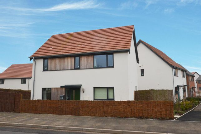 Thumbnail Property for sale in Norwich Road, Hingham, Norwich