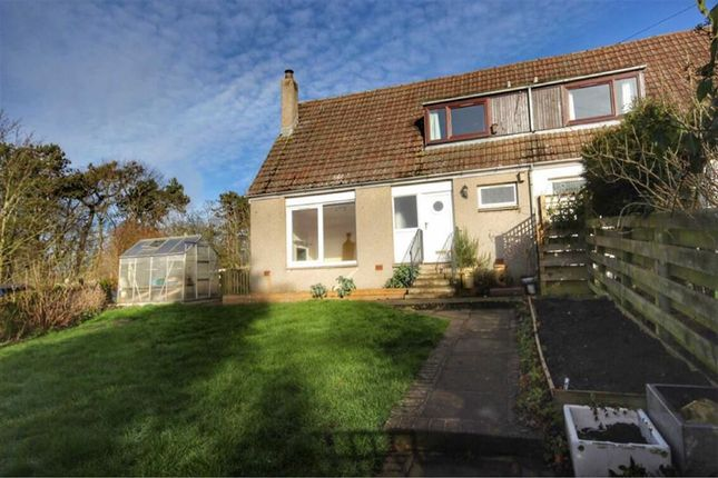 Thumbnail Semi-detached house for sale in West Cottage, South Dron, Near St Andrews, Fife