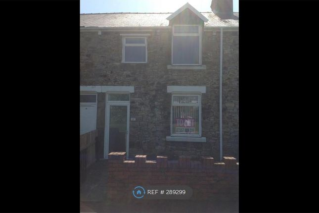 Thumbnail Terraced house to rent in Derwent Terrace, Greencroft