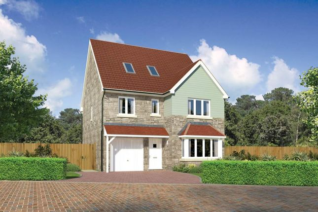 "Thumbnail Detached house for sale in ""Longrush"" at Beech Path, East Calder, Livingston"