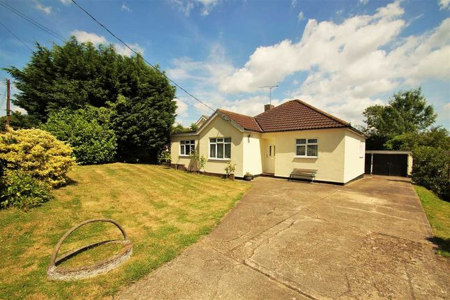 Thumbnail Bungalow for sale in Spring Lane, Fordham Heath, Colchester