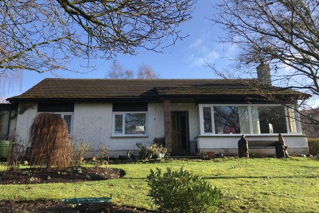 Thumbnail Bungalow for sale in Curin, Strathconon