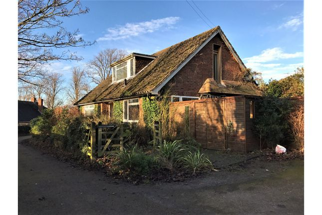 Thumbnail Detached house for sale in Pony Farm, Worthing