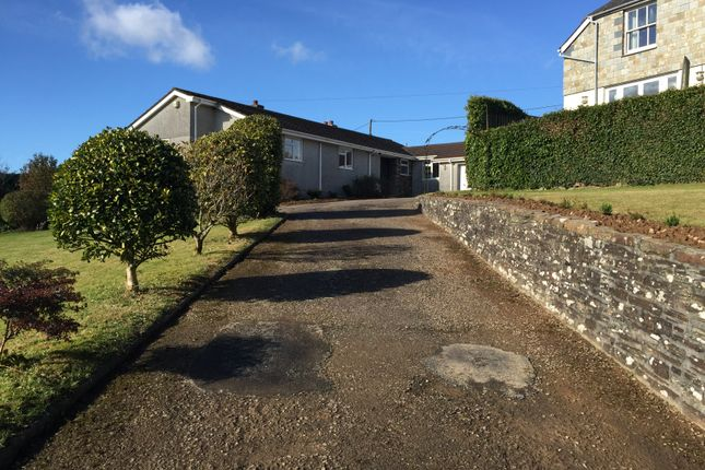 Thumbnail Detached bungalow to rent in Minehill, Menheniot, Cornwall