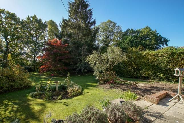 Thumbnail Bungalow for sale in Bugsell Lane, Robertsbridge, East Sussex
