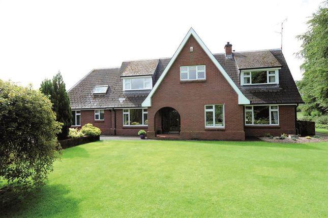 Thumbnail Detached house for sale in 192, Lough Shore Road, Enniskillen