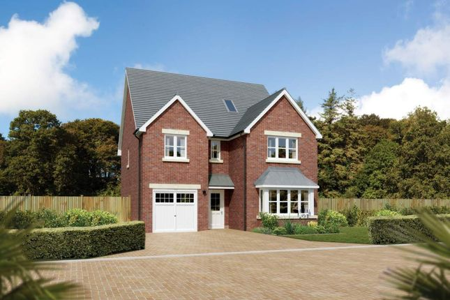 "Thumbnail Detached house for sale in ""Merrington"" at Main Street, Symington, Kilmarnock"