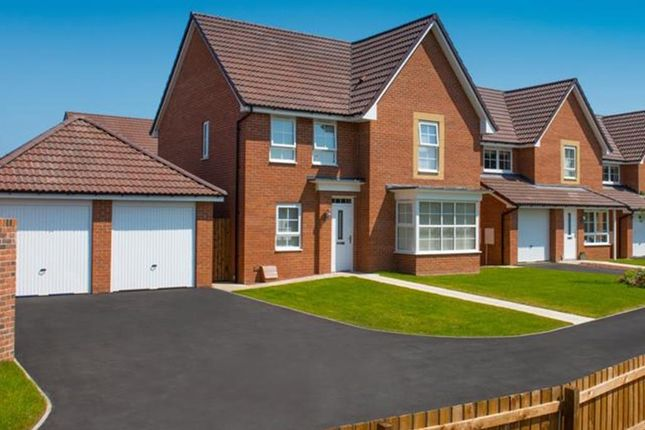 "Thumbnail Semi-detached house for sale in ""Moresby"" at Tenth Avenue, Morpeth"