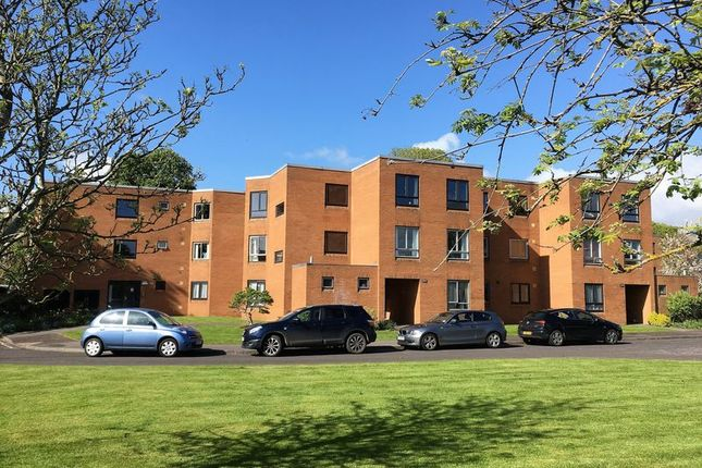 Thumbnail Flat to rent in Summerfield Court, French Weir Close, Taunton