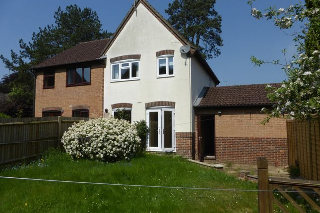 Thumbnail Property to rent in Gander Drive, Basingstoke