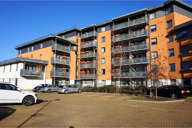Thumbnail Flat for sale in Lynmouth Avenue, Chelmsford