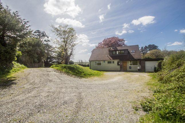 Thumbnail Detached bungalow for sale in Callington Road, Tavistock