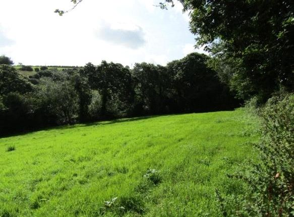 Picture No. 5 of Adjoining Governs Wood, Tregavethan, Truro, Cornwall TR4