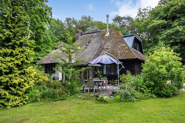 Thumbnail Detached house for sale in Dock Lane, Beaulieu, Hampshire