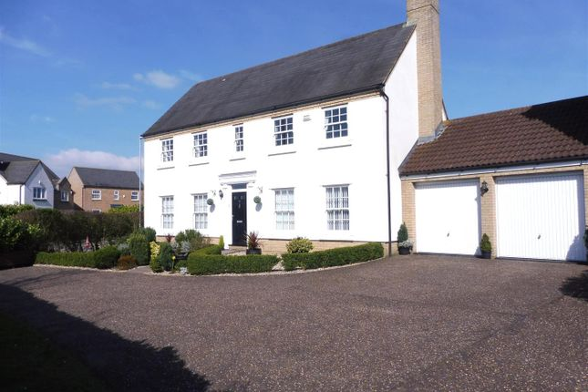 Thumbnail Detached house for sale in Wissey Way, Ely