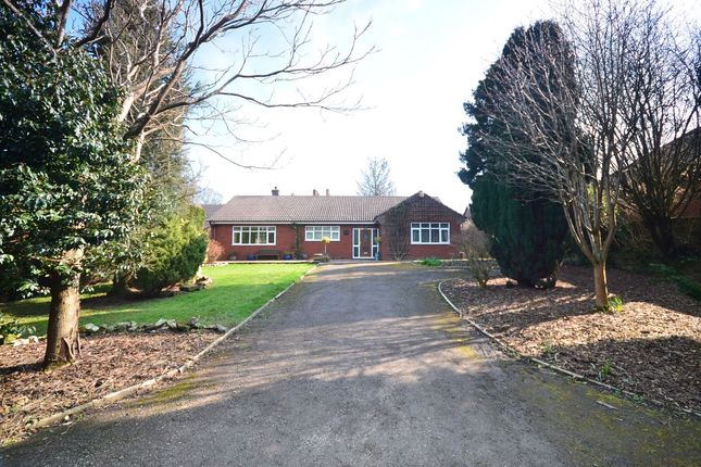 Thumbnail Detached bungalow to rent in Lightwood Road, Lightwood