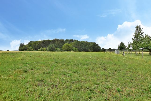 Main Page of Parsonage Farm, Forest Hall Road, Stansted, Essex CM24