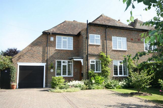 Thumbnail Semi-detached house for sale in Collington Lane East, Bexhill-On-Sea