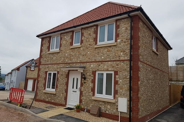 Thumbnail Detached house to rent in Dukes Way, Axminster, Devon