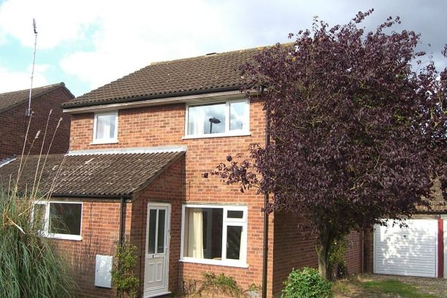 Thumbnail Property to rent in Walcot Close, Cloverhill, Norfolk