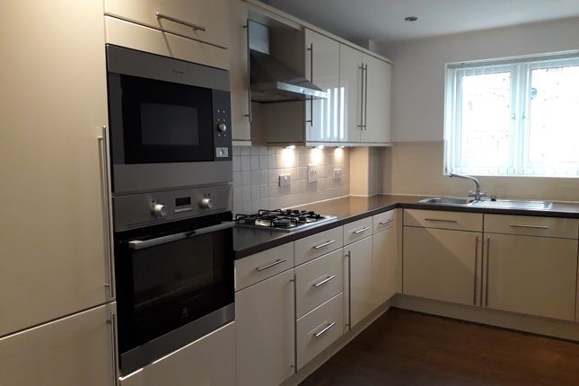 Thumbnail Flat to rent in Slake Terrace, Hartlepool