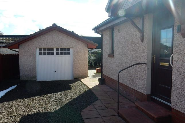 Thumbnail Bungalow to rent in Wallace Wynd, Law, Carluke