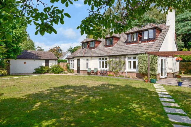 Thumbnail Bungalow for sale in The Avenue, West Moors, Ferndown, Dorset