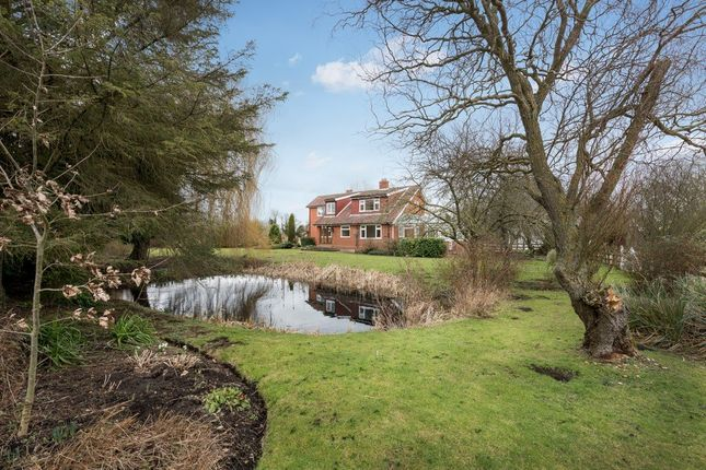 Thumbnail Detached house for sale in Pooley Street, South Lopham, Diss, Norfolk