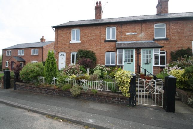 Thumbnail Terraced house to rent in Huxley Lane, Tiverton