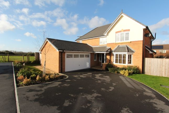 Thumbnail Detached house for sale in Jubilee Gardens, Staining, Blackpool