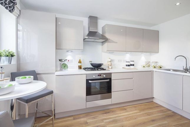 """Thumbnail Detached house for sale in """"Stevenson"""" at Pedersen Way, Northstowe, Cambridge"""