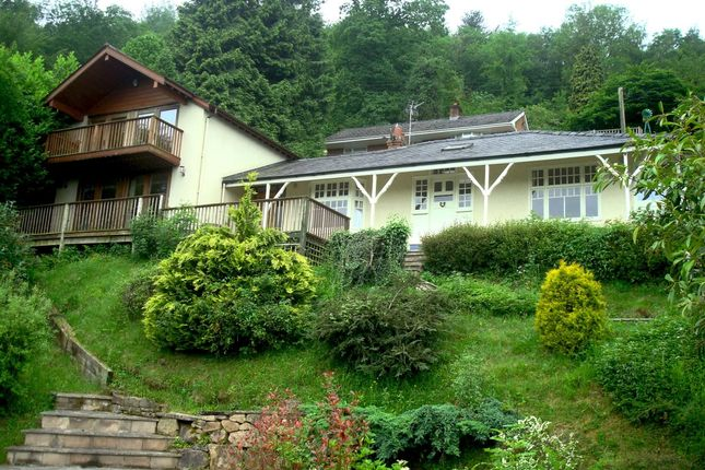 Thumbnail Detached house to rent in Symonds Yat, Ross-On-Wye
