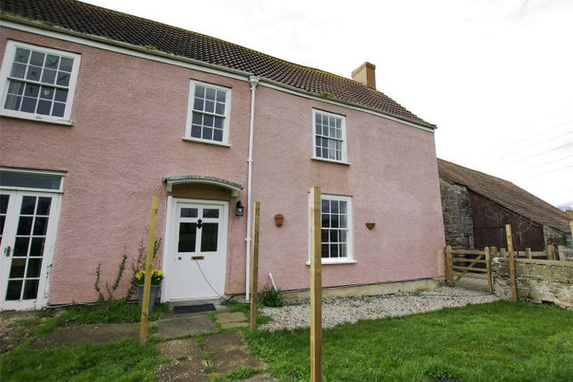 Thumbnail Cottage to rent in Main Road, Aust, Bristol