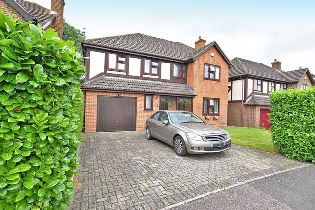 Thumbnail Property to rent in The Hedgerow, Weavering, Maidstone