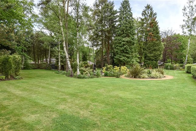 Communal Grounds of Wellington Mansions, Ardwell Close, Crowthorne RG45