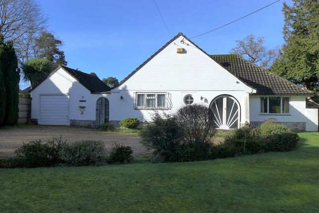 Thumbnail Detached bungalow for sale in Pinewood Road, Ferndown