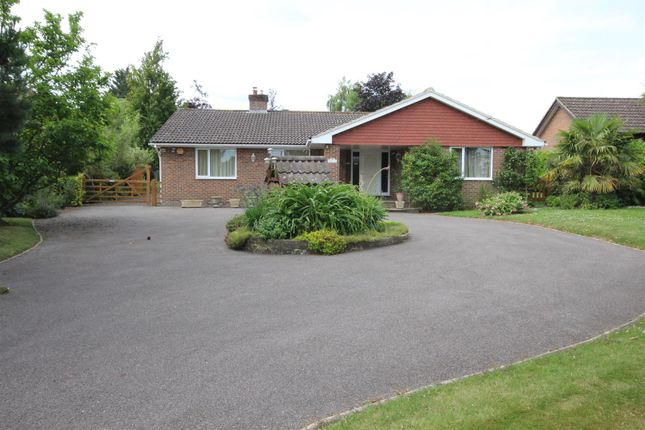 5 bed detached bungalow to rent in Eastbourne Road, Halland, Lewes BN8