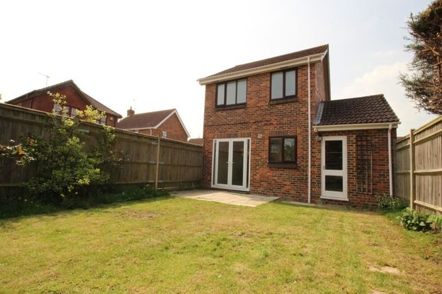 Thumbnail Detached house to rent in Carisbrooke Drive, Worthing