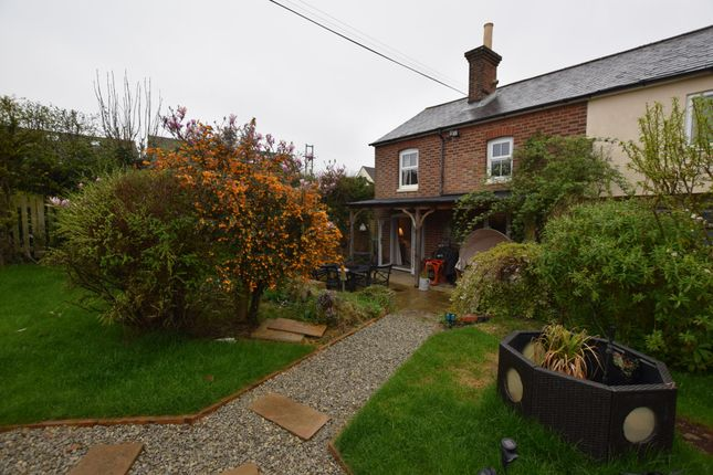 Thumbnail Semi-detached house to rent in Butchers Lane, Three Oaks, Hastings