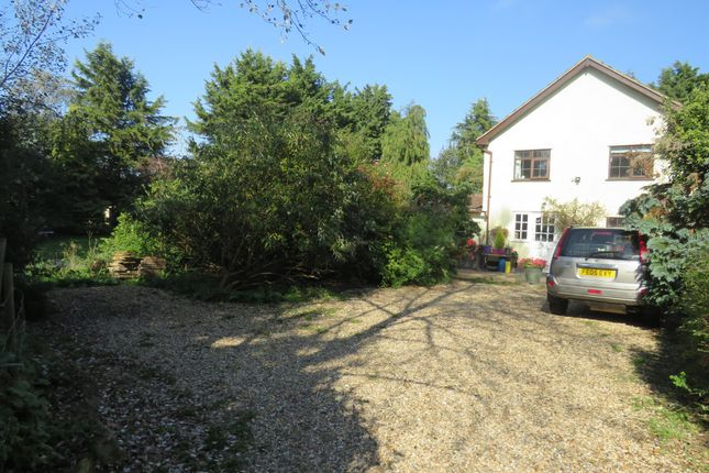 Thumbnail Detached house for sale in Mill Lane, Garboldisham, Diss