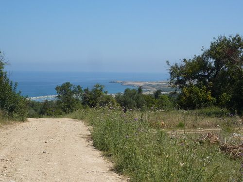 Thumbnail Land for sale in Sipahi, Famagusta, Cyprus