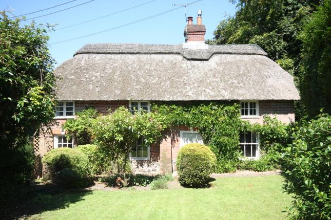 Thumbnail Detached house for sale in Affpuddle, Dorchester
