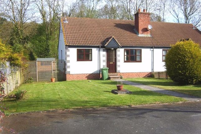 Thumbnail Semi-detached bungalow to rent in Heliston Place, Pontrilas, Herefordshire