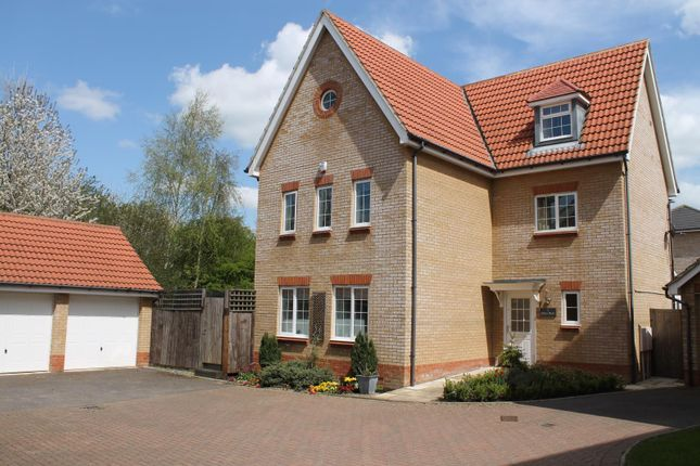 Thumbnail Detached house to rent in Shires Walk, Edenbridge