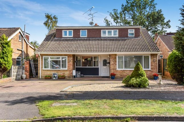 Thumbnail Detached bungalow for sale in Blackwater, Camberley