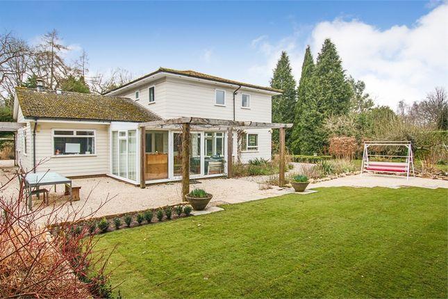 Thumbnail Detached house for sale in Birch Grove, Lake View Road, Felbridge, West Sussex