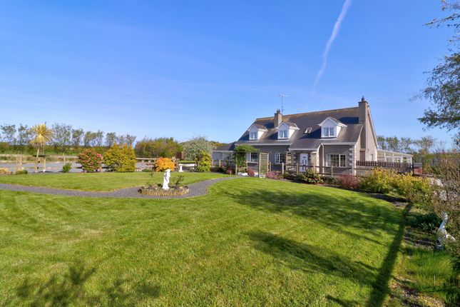 Thumbnail Detached house for sale in Greystone Road, Ballywalter, Newtownards