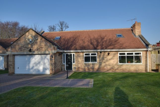 Thumbnail Bungalow for sale in Plantation Road, Redcar, North Yorkshire