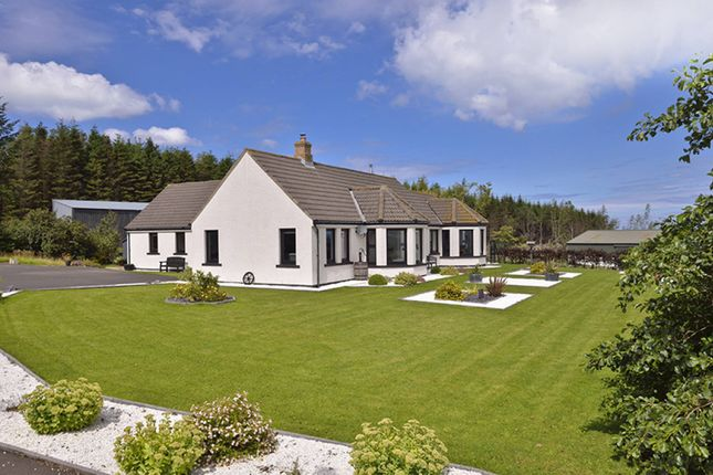 Thumbnail Property for sale in Coldingham, Eyemouth